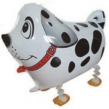 Шар ходячая собака далматин 65 см